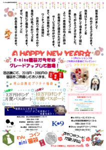 k-nine通信新年号